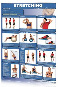 Poster Stretching Upper Body