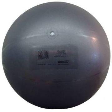 Theragear 65cm Pro Ball